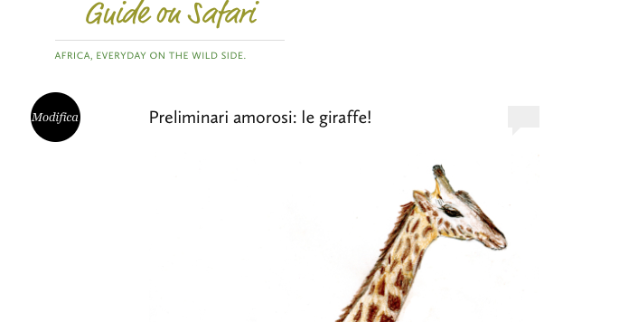 Guide on Safari: le ultime news dal Blog di Stefano Pesarelli